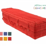 Colour Willow Coffin